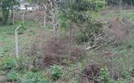 Foto do empreendimento Terreno Piraquara